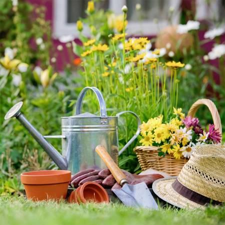 Gardening Basic's DIY